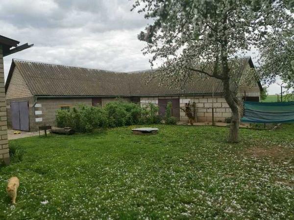 Продаём дом Срочно в Знаменском сельсовете деревня Селище 3